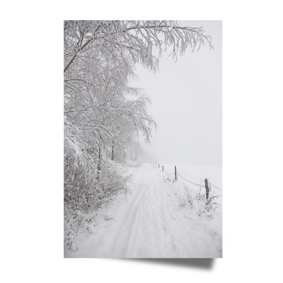 Fine Art Print Winter