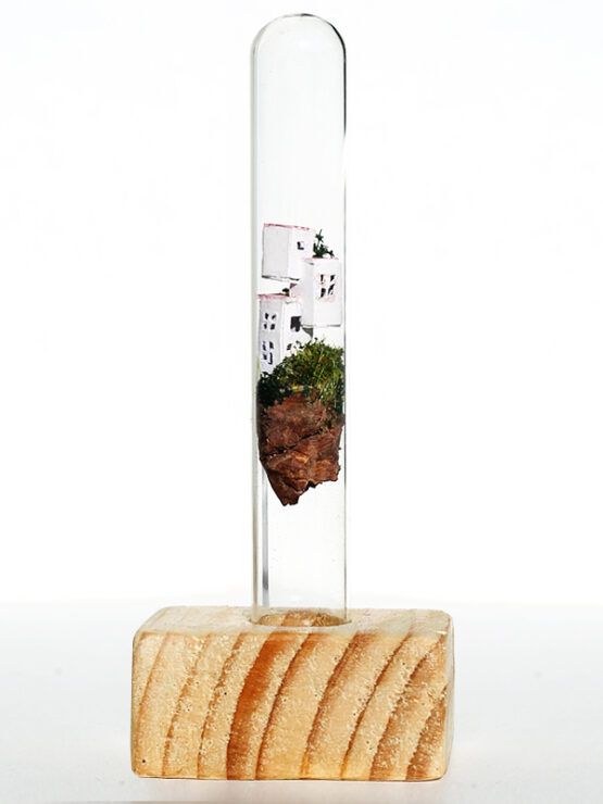 Miniwelt im Reagenzglas